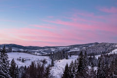 Winter sunrise in the mountains. Winter sunrisein the mountains, trees in the snow Royalty Free Stock Images