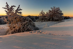 Winter sunrise at mountains. It was minus 11 degree outside, but very nic winter in mountains at Velka Javorina, White Carpathian royalty free stock image