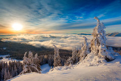Winter sunrise over the clouds Royalty Free Stock Photography