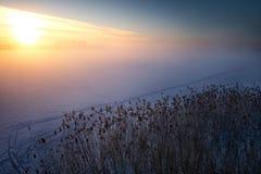 Winter sunrise over lake shore 2 Royalty Free Stock Photos