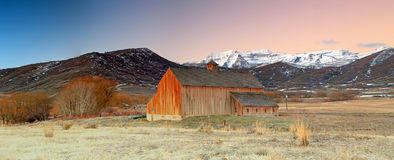 Winter sunrise panorama with an old barn. Stock Images
