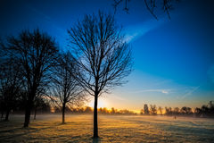 Winter Sunrise at a Park Stock Photo