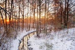 Winter sunrise scene Stock Images