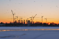 Winter sunrise in St. Petersburg Stock Photo
