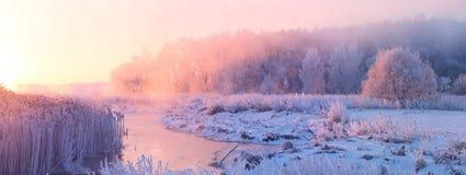 Misty winter sunrise. Colorful winter sunrise. Bright sunlight in december. Warm colors Stock Photos