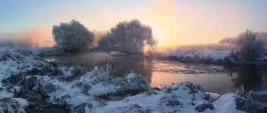 Misty winter sunrise Stock Images