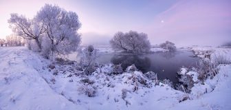 Morning moonlight. Frosty winter morning. Frozen trees. Purple toning. winter sunrise with moon Stock Photo