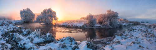 Picturesque winter sunrise. Frozen trees illuminated by the rising sun. Stitched panorama of winter morning with difficult back light Stock Photography