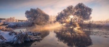 Fairy winter sunrise. Perfect winter sunrise. Sun shines through frozen trees Royalty Free Stock Images
