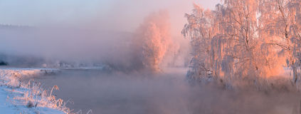 Frosty winter sunrise. Frosty winter trees illuminated by the rising sun Royalty Free Stock Images