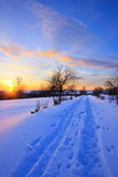 Winter sunset. Sunset in countryside at winter Stock Image