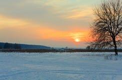 Free Winter Sunset Royalty Free Stock Photos - 12916848