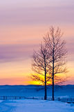 Winter sunset Royalty Free Stock Photo