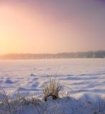 Winter sunset Stock Photos