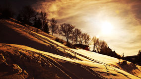 Winter sunset Stock Images