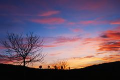 Winter sunset. Beautifully red blue and purple colored winter sunset stock images