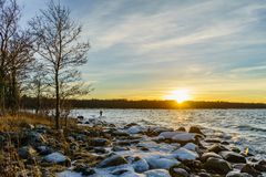 Winter sunset on the baltic sea Royalty Free Stock Photos