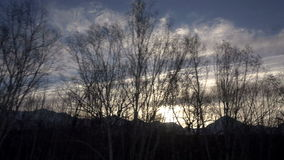 Winter sunset and blue sky against a background of twinkling trees and mountain peaks stock footage