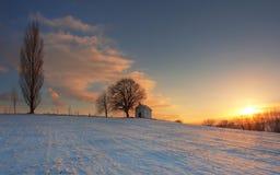 Winter sunset on field Stock Photo