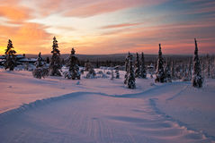 Winter sunset in Finland Stock Photos