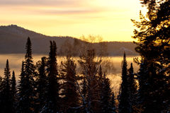 Winter sunset in the forest Stock Photography