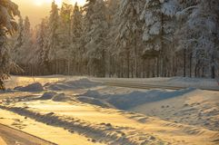 Winter sunset in the forest landscape Royalty Free Stock Photography