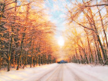 Winter sunset - good background Stock Photos