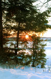Winter sunset i Stock Images