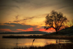 Winter sunset in Ireland. Magical sunset over Lough Gur lake Stock Photos