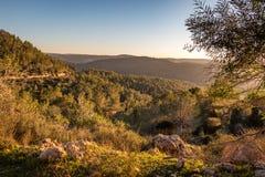 Winter sunset in Israel. Mount Eitan Stock Images