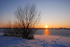 Winter sunset by the lake Stock Images