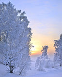 Winter sunset landscape Royalty Free Stock Image