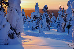 Winter sunset on mountain. On cold day Royalty Free Stock Photography