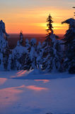 Winter sunset on mountain. On cold day Stock Photography