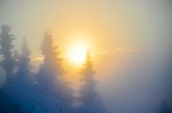 Winter sunset on mountain Royalty Free Stock Photos