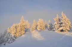 Winter sunset on mountain Stock Photography