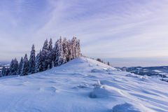 Winter sunset in the mountains. Snow,  trees in the snow Stock Photography