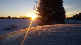 Winter sunset Royalty Free Stock Photography