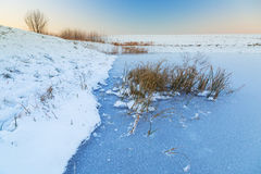 Winter sunset over frozen pond Royalty Free Stock Photos