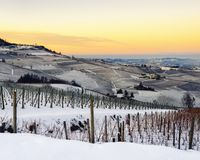 Winter sunset over the vineyards of Barolo Langhe, Piedmont,Ita. Vineyards of Barolo in the hills of Langhe, Piedmont, Italy at sunset. Countryside and rows Royalty Free Stock Image
