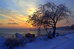 Free Winter Sunset Shore Royalty Free Stock Photo - 37162835