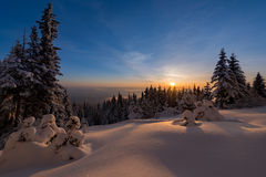 Winter sunset snow field on top of mountain with frosty pine trees on the background of taiga forest and hills under colorful sky. Stock Photography
