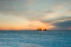 Winter sunset on a snowy field between trees Royalty Free Stock Photography