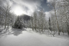 Winter sunshine. The sun breaks through the clouds after a snow storm Stock Photography