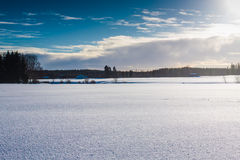Winter Sunshine In The Fields 1. The sun finally came out and shared some light to the snowy fields stock photography