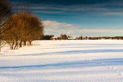 Winter Sunshine In The Fields 3. The sun finally came out and shared some light to the snowy fields stock photo