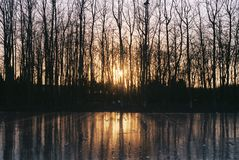 Winter sunshine and Ice reflection. I took the following picture with a film camera.The winter sun shone through the trees on the ice, which reflected the stock photo