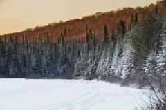 Winter Sunshine Royalty Free Stock Photos