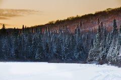 Winter Sunshine Stock Images