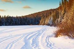 Winter Sunshine Royalty Free Stock Photo